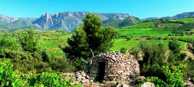 Sud de France (1/3): des vins qui prennent de la hauteur!