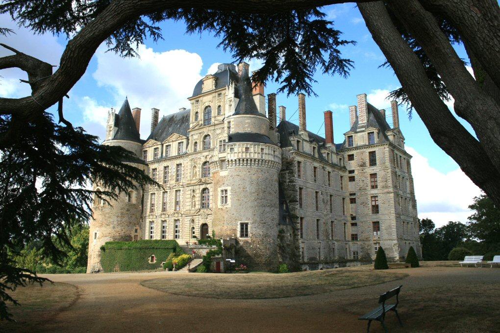 chateau-de-brissac-quince_ab