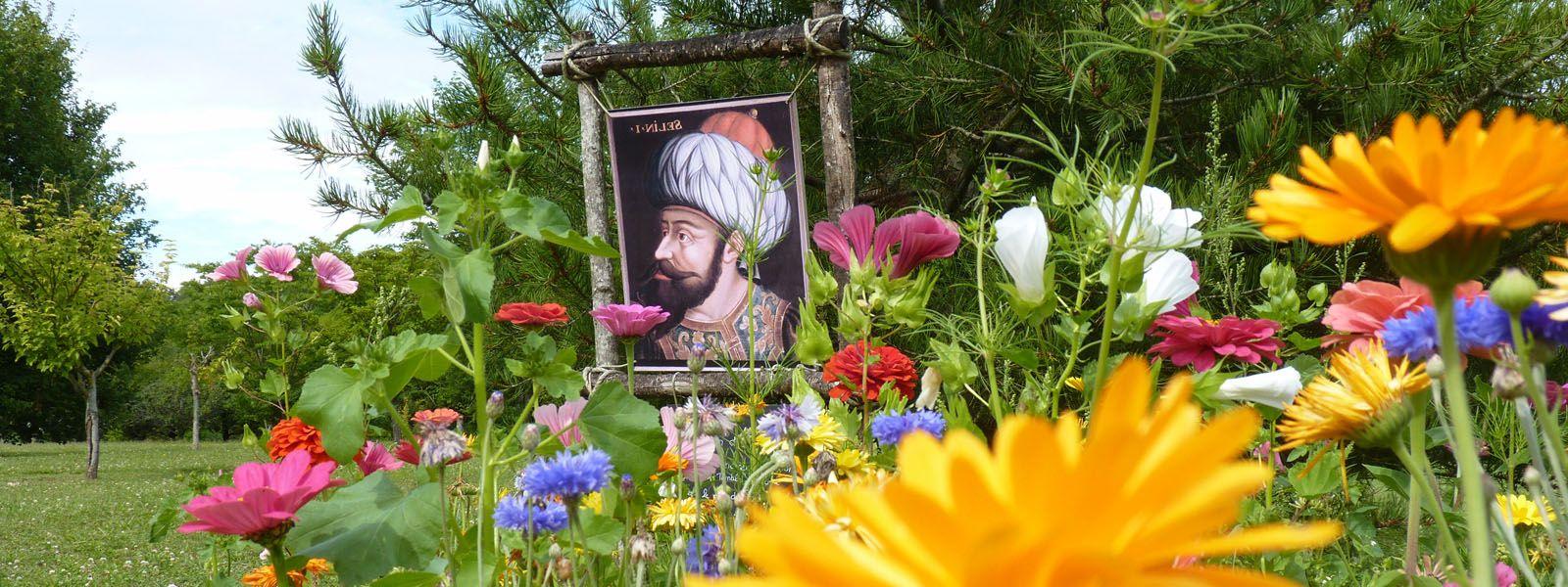 jardins_portraits_beauregard-loire.com