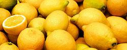 dossier-presse-citron