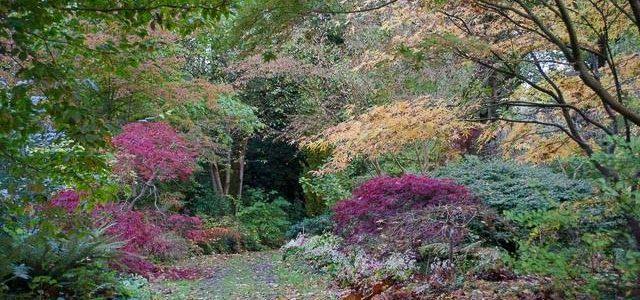 Une princesse norvégienne à l'origine de l'un des plus beaux jardins de Normandie, le Vastérival.