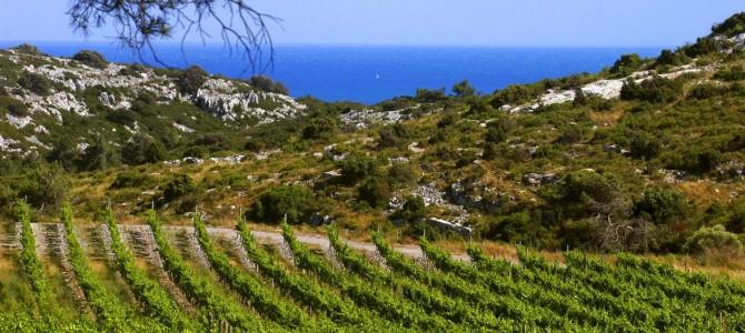 Sud de France (2/3): Une région qui donne de la bouteille!