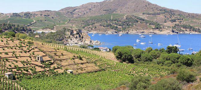 Les Pyrénées-Orientales, entre mer et montagne, c'est aussi le sud de la France ! (1/4)