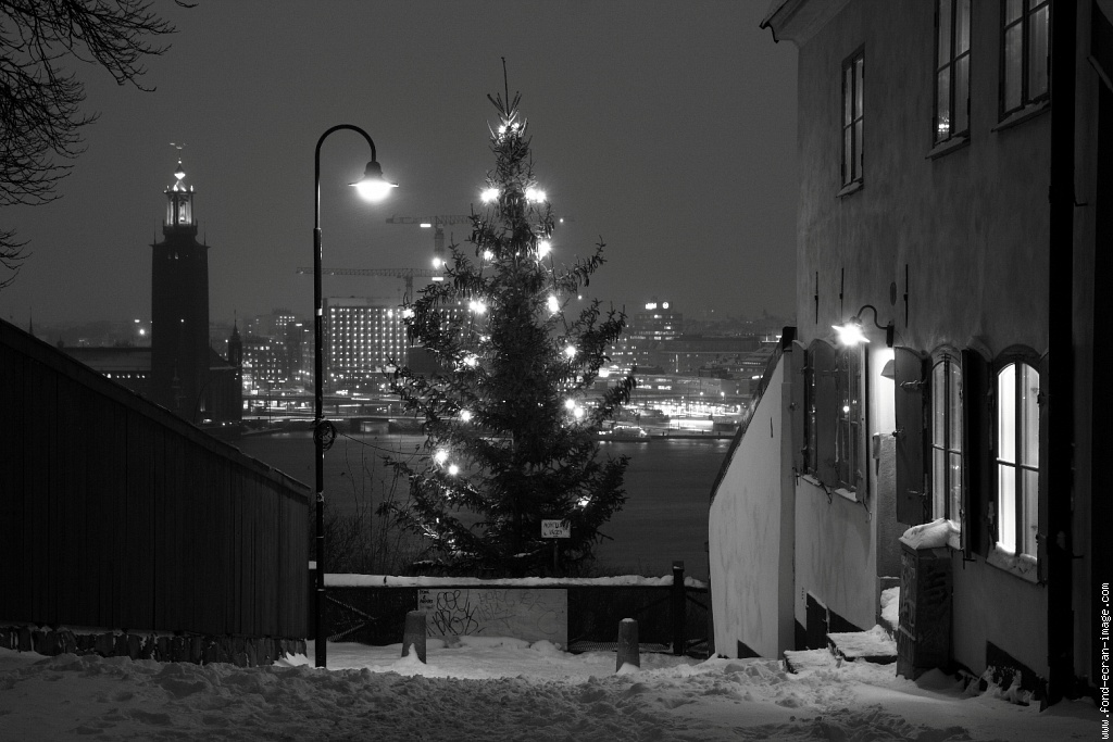stockholm noel sapin