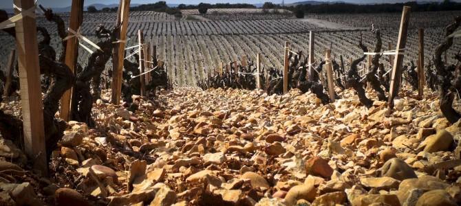 Vu ailleurs : Châteauneuf-du-Pape ? «Un vin royal, impérial et pontifical !»