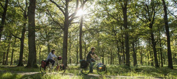 À moins d'une heure de Paris: Fontainebleau, Vallée de Chevreuse, Terres de Seine et autres Chantilly !