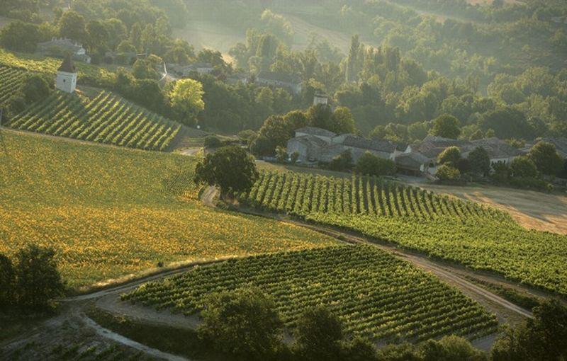 vins_Sud_montagne